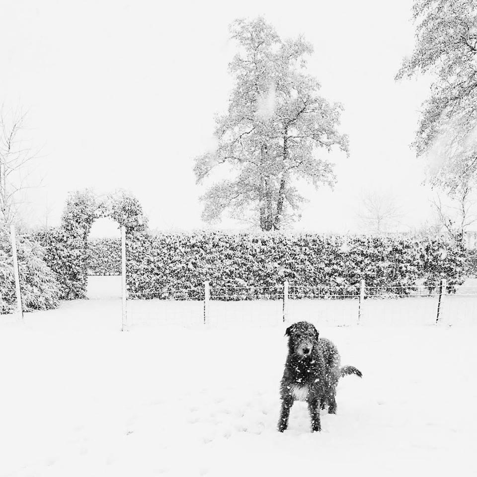 Snow fun for Raff